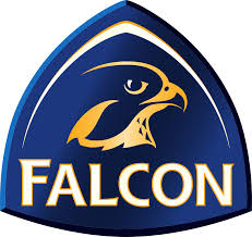 Falcon Management Services
